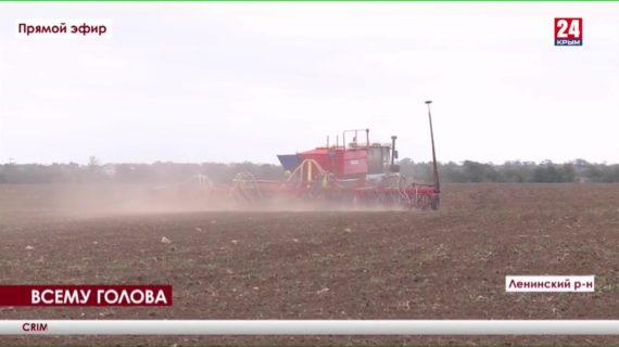 Горячий сезон холодной осенью. В Ленинском районе аграрии приступили к посеву озимых